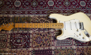 P1010695 Fender 01_1