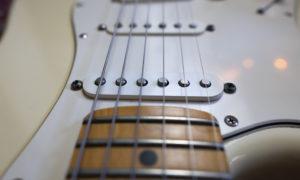 P1010702 Fender 06